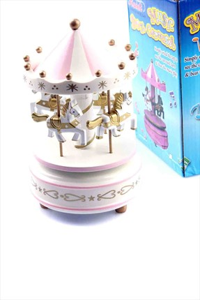 Learning Toys Music Box Carousel