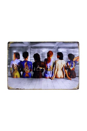 Dekoratif Retro Metal Pano Lady Color 20x30