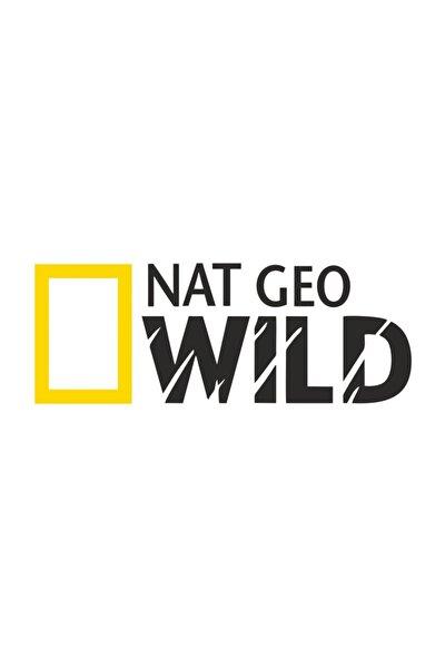 Nat Geo Wıld Netgeowild National Geographic Sticker 25x9 Cm 00189