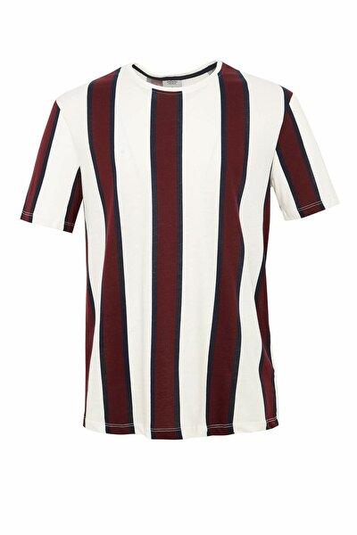 Erkek Beyaz Çizgili Regular Fit T-Shirt N5877AZ.20SM.WT34