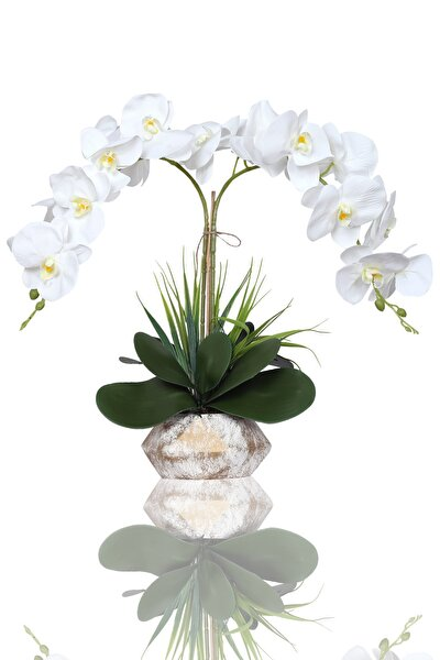 Dekoratif Elegant Serisi 2 Li Beyaz Islak Orkide Yapay