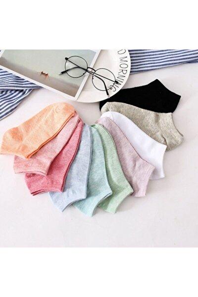 Kadın 12 Çift Koton Ekonomik Karışık Soft Renkler  Patik Çorap