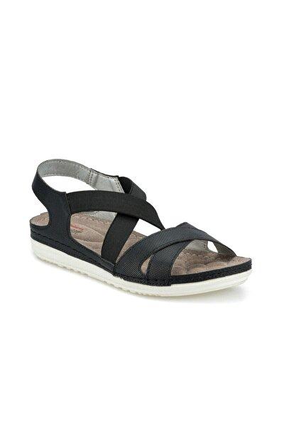 161164.Z Siyah Kadın Sandalet 100509598