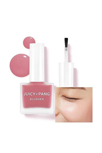 Doğal Görünüm Sunan Nemlendirici Likit Allık 9g. APIEU Juicy-Pang Water Blusher (PK02)