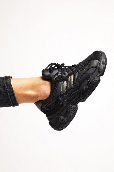 Kadın Siyah Spor Ayakkabı Tb246