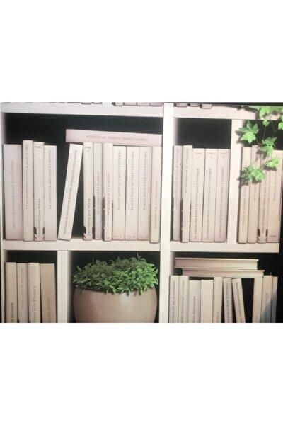Kitaplık Desenli Ithal Duvar Kağıdı (5M²)