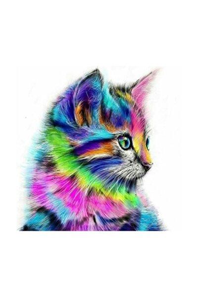 Rb 9009 Sayılarla Boyama Seti Neon Kedi Resimli Set 30x40cm Tuval,14 Renk Boya,3 Fırçalı - Çerçeveli