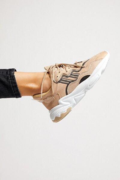 Toprak Unisex Sneaker TB248-0