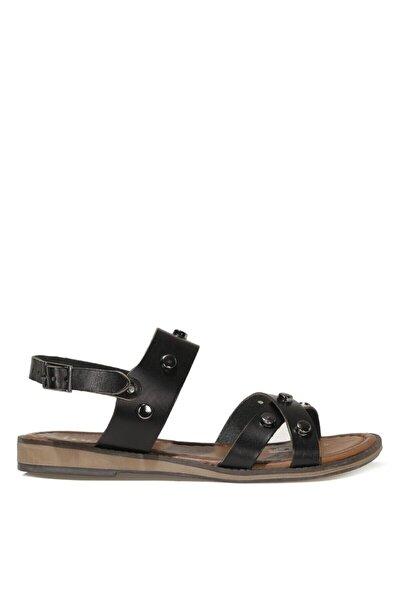 ALE.Z 1FX Siyah Kadın Sandalet 101038236