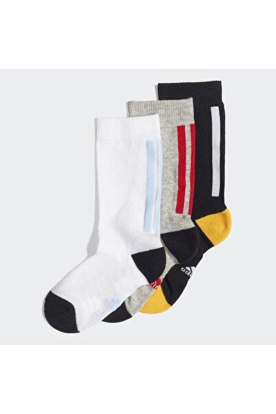 Lk Cr Sock 3pp Çok Renkli Unisex Çorap