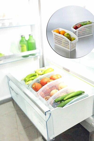 Buzdolabı Düzenleyici