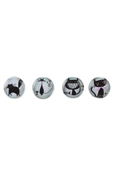 Pano Mıknatısı - Buzdolabı Cam Magnet Seti - 4 Adet Kedi