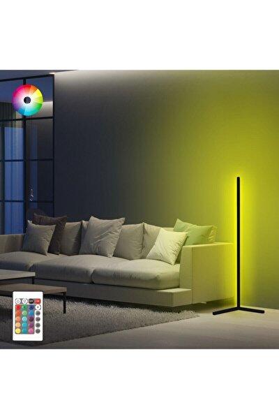 Dekoratif Minimalist Led Lambader Animasyonlu Kumandalı 256 Renk Köşe Lambası