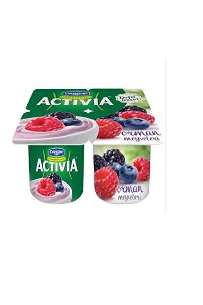 Activia Probiyotikli Yoğurt Orman Meyveli 100 gr