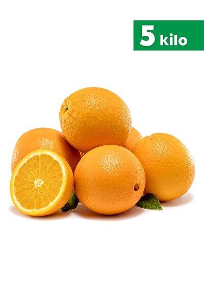 Antalya Portakalı - 5 Kg