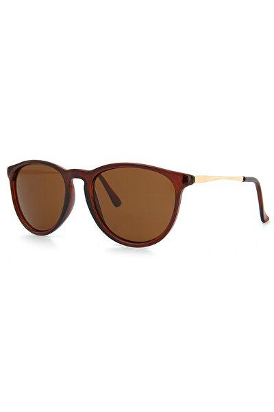 Kadın Kahverengi Güneş Gözlüğü Apss050203