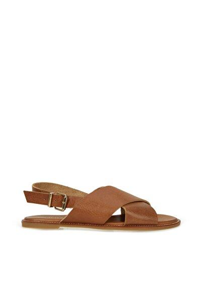 Kadın Taba Çapraz Bantlı Deri Sandalet