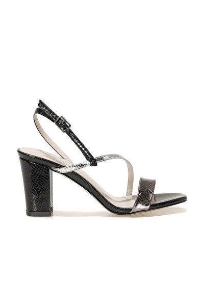 CANNES.Z 1FX Siyah Kadın Topuklu Sandalet 101038255