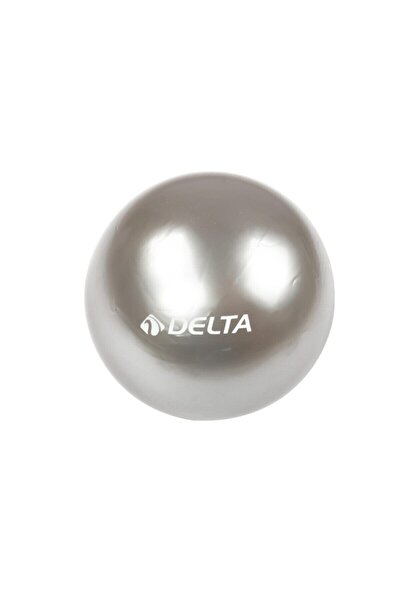 Slv805 20cm Pilates Topu-gümüş