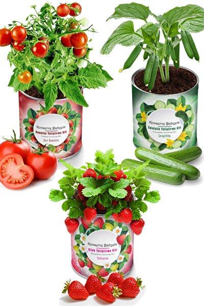 Çilek  Salatalık  Domates 3 Adet Sebze Yetiştirme Kiti - Fide Yetiştirme Sebze Tohum Ve Torf Seti