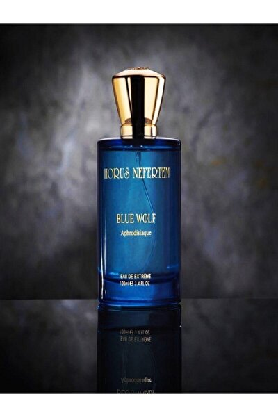 Erkek 100 ml EDP Parfüm