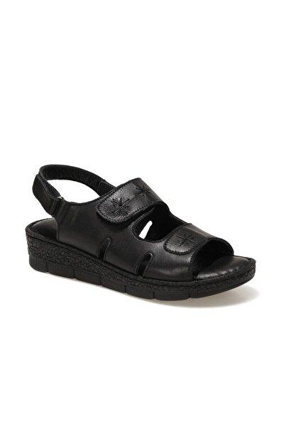 161849.Z1FX Siyah Kadın Sandalet 101019824