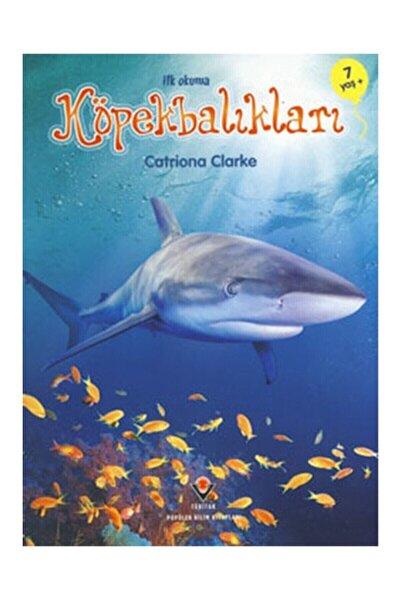 İlk Okuma Köpekbalıkları