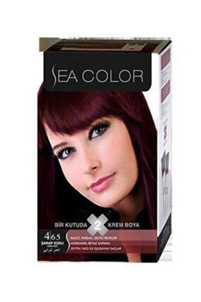 Color 4,65 Şarap Kızılı 2 Tüplü Set Boya