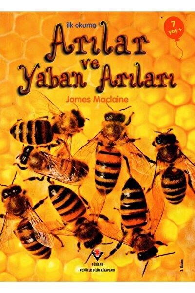 Arılar / Ilk Okuma