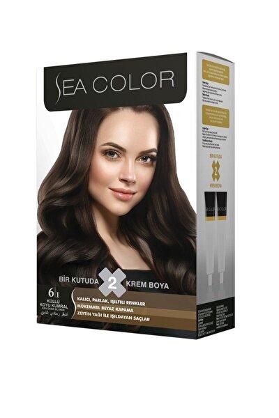 Color 2'li Krem Saç Boyası 6/1 Küllü Koyu Kumral