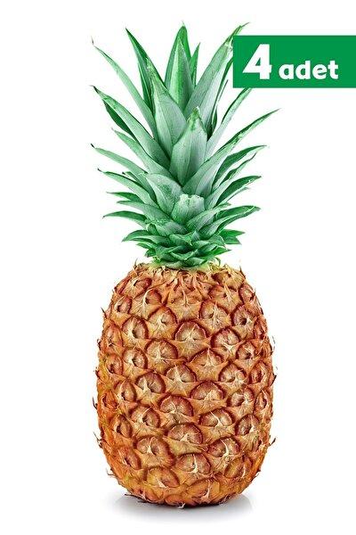 Ananas - 4 Adet