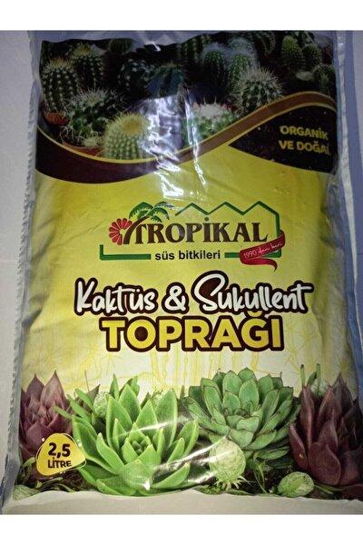 Tropikal Kaktüs Sukulent Toprağı 2,5 Lt (organik Ve Doğal)
