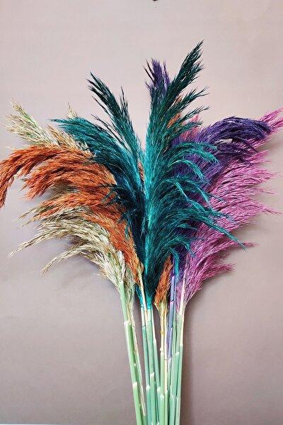 Şoklanmış Pampas Otu 100 Cm 13'lü Demet Kuru Çiçek Karışık Renk