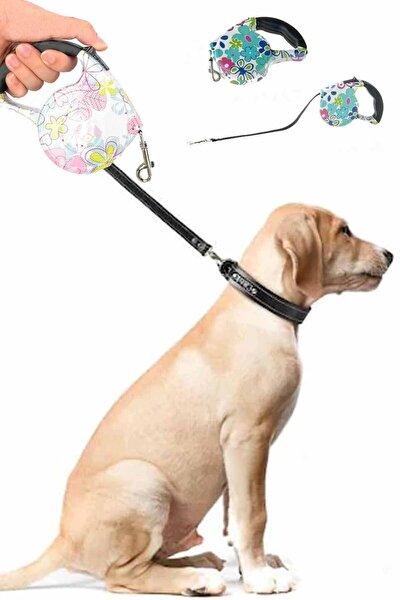Desenli Köpek Gezdirme Tasması 5 Mt Otomatik Kayışlı Tasma