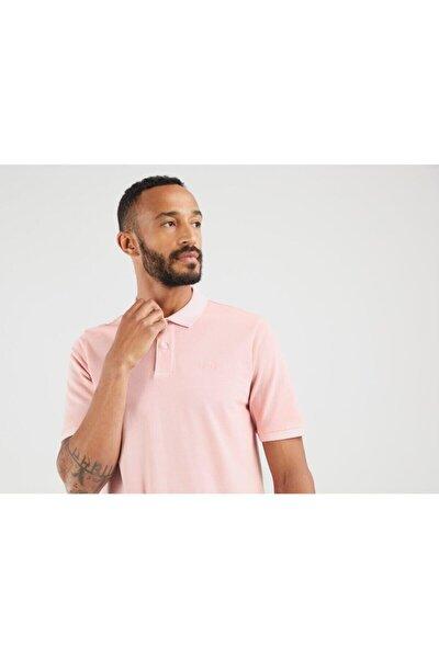 Erkek Pembe New Authentıc Logo Polo Powder Pınk Gar Tshirt
