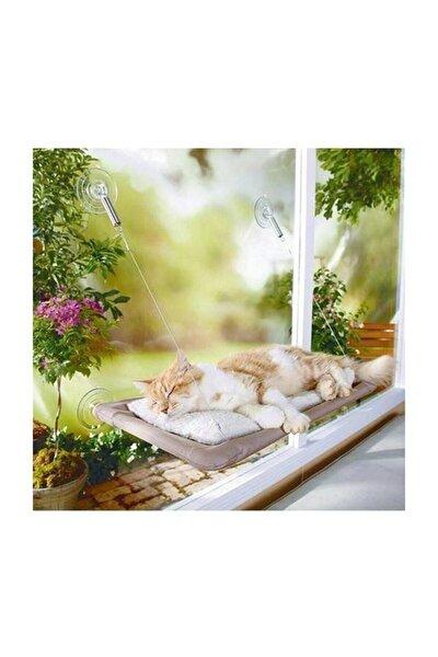 Sunny Seat Cama Yapışan Vantuzlu Kedi Yatağı, Kedi Oyuncağı