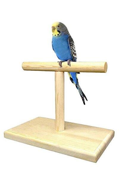 Ahşap Kuş Eğitim Standı