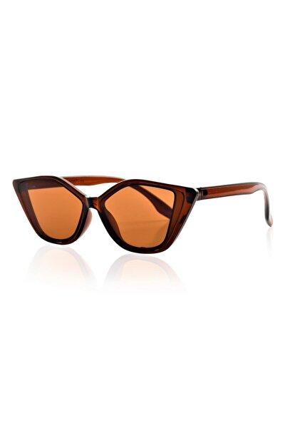 Pualaw Brown Kadın Güneş Gözlüğü