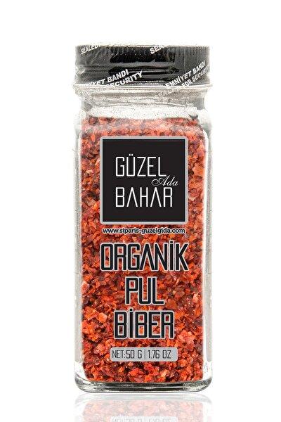 Organik Pul Biber Acı 50 g Tuzluklu