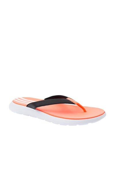Comfort Flip Flop Kadın Terlik
