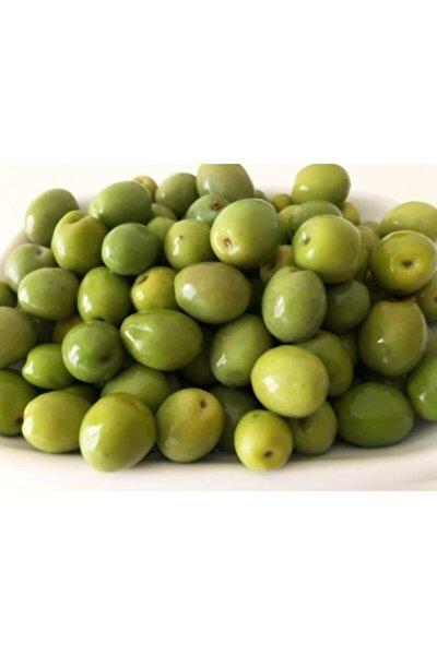 Halhalı Yeşil Zeytin 1,5 kg
