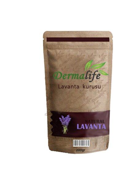 Doğal Lavanta Kurusu Lavanta Çayı Meditasyon Etkisine Sahip Yeni Kurutulmuş Lavanta Tomurcukları