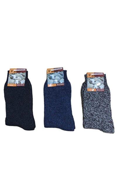3'lü Norveç Tipi Havlulu Yünlü Çorap (6042 Likralı) Kışlık