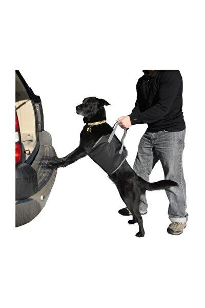 Araç Arkası Köpek Koyma Aparatı 424691