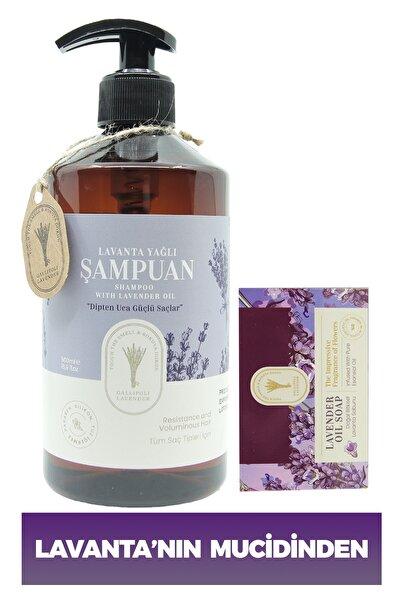 Kepeğe Ve Saç Dökülmesine Karşı Etkili Bitkisel Şampuan 500 Ml + Lavanta Yağlı Bitkisel Sabun