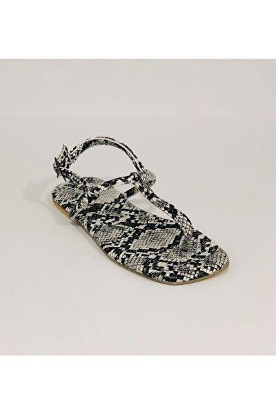 Siyah Yılan Desenli Kadın Sandalet