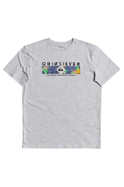 Dıstant Shores Ss Gri Erkek Kısa Kol T-shirt
