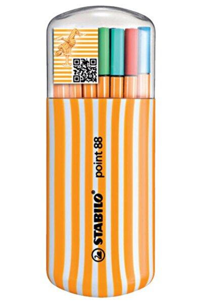 Boyama Kitabı Hediyeli + Point 88 Zebrui 20 Renk