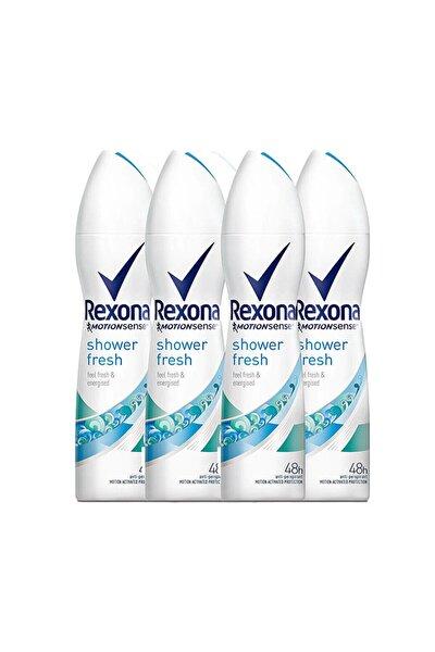 Shower Fresh 150 ml Deodorant X 4