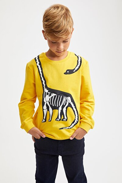 Erkek Çocuk Dinozor Baskılı Fermuar Detaylı Sweatshirt